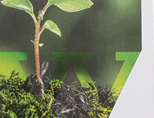Van Werven – sustainability report